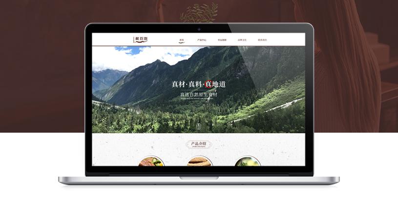 藏百源品牌网站建设