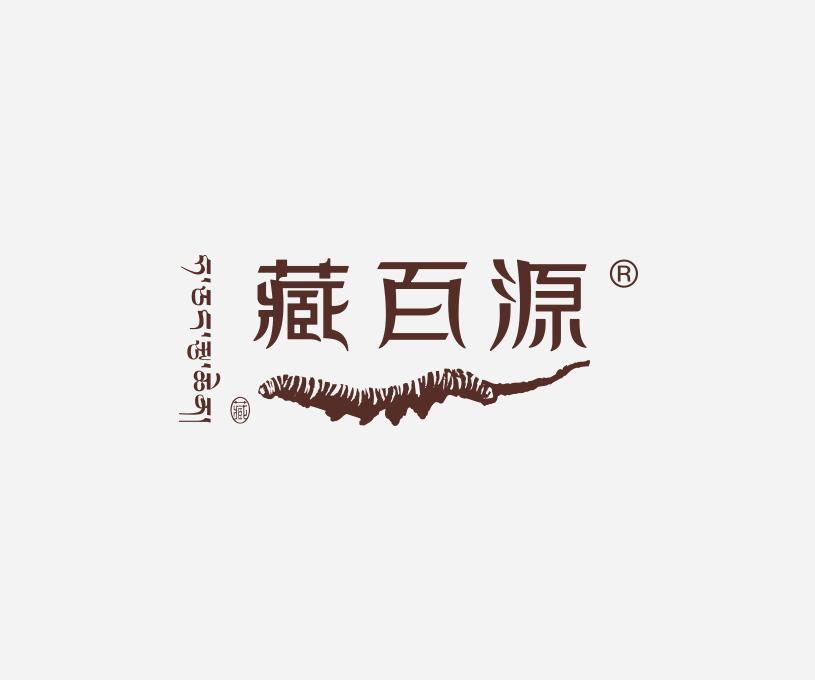 藏百源全案品牌策划服务